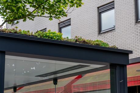 Utrecht a fait verdir les toits de 316 abribus. Une pétition propose de lancer une initiative identique au Luxembourg. (Photo: Shutterstock)