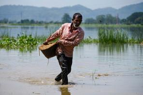 5.000 agriculteurs de deux régions indiennes profiteront de la technologie mise sur pied par Ibisa pour Global Parametrics, adossée à Hannover Re. Un chiffre qui montera à 500.000 d'ici 2024. (Photo: Shutterstock)