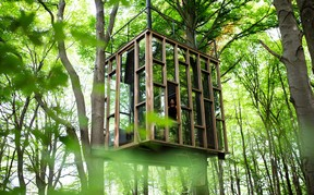 The Glass Cube and its mixture of glass and wood.  Ici