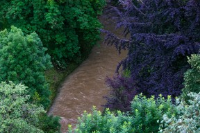 The Petrusse river in Luxembourg City, 15 July 2021. Matic Zorman / Maison Moderne