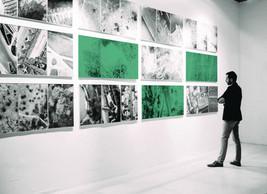 Galerie (Unsplash)