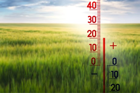 Le désinvestissement des actifs à forte intensité carbone augmentera fortement au cours des cinq prochaines années, pour le plus grand bien du climat. (Photo: Shutterstock)