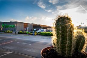 Parmi les spécificités de Cactus figure le fait que l'enseigne est généralement propriétaire et exploitante des surfaces occupées. ((Photo: Nader Ghavami / Maison Moderne))