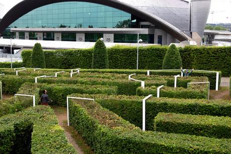 Un terrain de foot est installé dans le labyrinthe végétal du Parc Central. (Photo: OlivierMinaire)