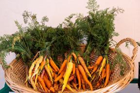 Chez Lët'z Grow, Senad Alic ne s'impose aucune limite dans ses essais pour cultiver une variété la plus large possible de légumes, fruits et plantes aromatiques. (Matic Zorman / Maison Moderne)