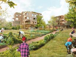 Autour des logements, on trouvera des jardins potagers. ((Illustration: Temperaturas ExtremasArquitectos))