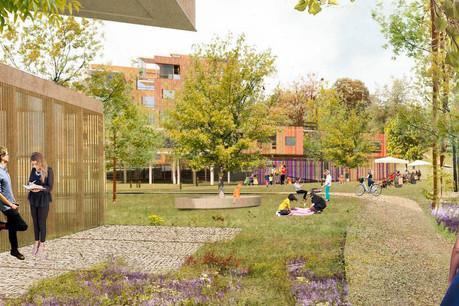 Le projet «Living in the forest» repose sur la création d'un quartier au cœur d'une nouvelle forêt urbaine. (Illustration: Temperaturas ExtremasArquitectos)