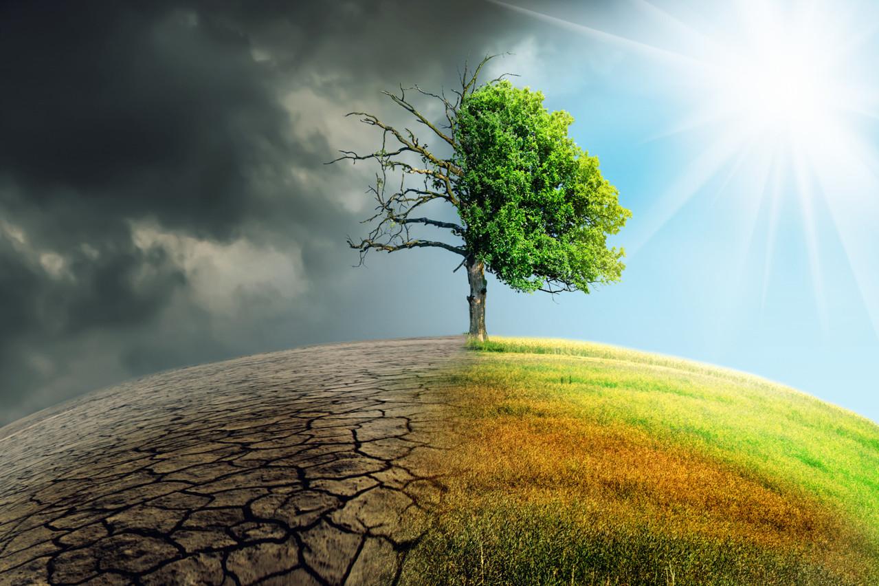 Les objectifs de protection de l'environnement du Luxembourg sont désormais inscrits dans la loi. (Photo: Shutterstock)