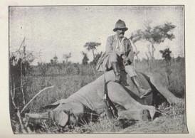 Maurice Pescatore en chasseur de gros gibier ((Photo:image publiée dans «Chasses et voyages au Congo» (1932), p. 97))