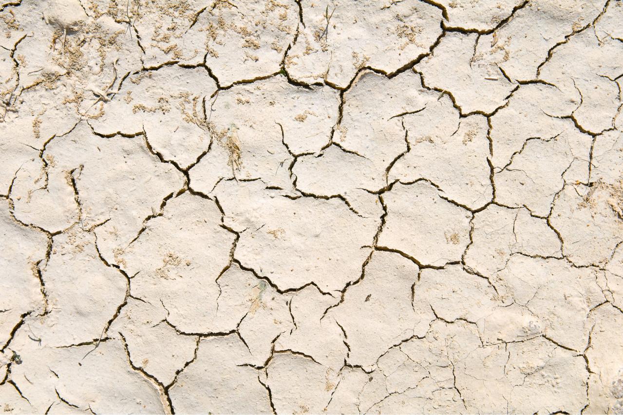 La terre craque, affirme le Giec, dans le deuxième des trois rapports qu'il a rendus jeudi 8 août au matin. Et les hommes politiques doivent réorienter leur programme. Une question environnementale, mais aussi de sécurité alimentaire. (Photo: Shutterstock)