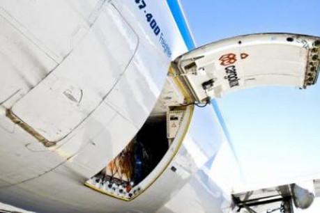 Cargolux se cherchait un partenaire industriel depuis fin 2009. (Photo: Cargolux)