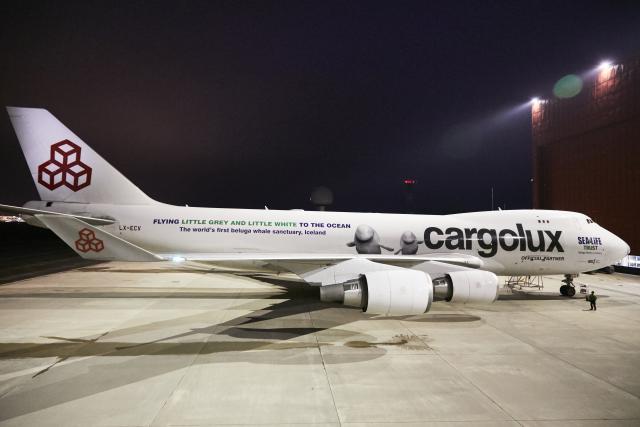 Un avion aux motifs uniques pour un voyage unique. (Photo: Cargolux)