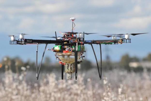 Les drones seront-ils aussi efficaces que les abeilles? (Photo: DR)