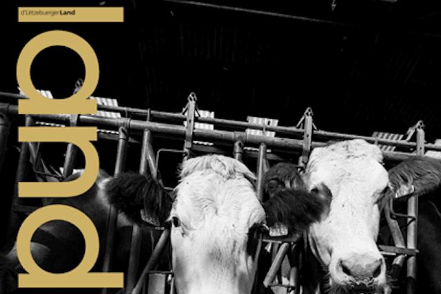 Cette édition du Land, consacrée au secteur agricole, sera demain dans les kiosques.  (Photo: Land)