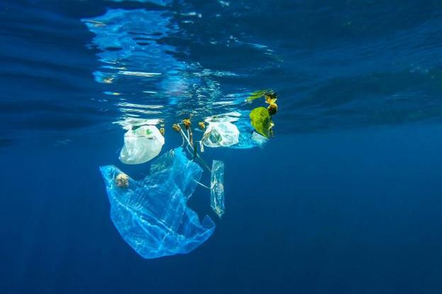 Pour réduire la pollution des océans, des mers et des rivières en Europe, la Commission propose de réduire, voire d'interdire, certains produits à usage unique d'ici l'horizon2025. (Photo: Licence C.C.)
