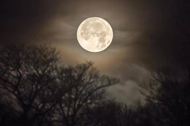 La Lune pourrait bientôt posséder son propre réseau téléphonique. (Photo: The Independent)