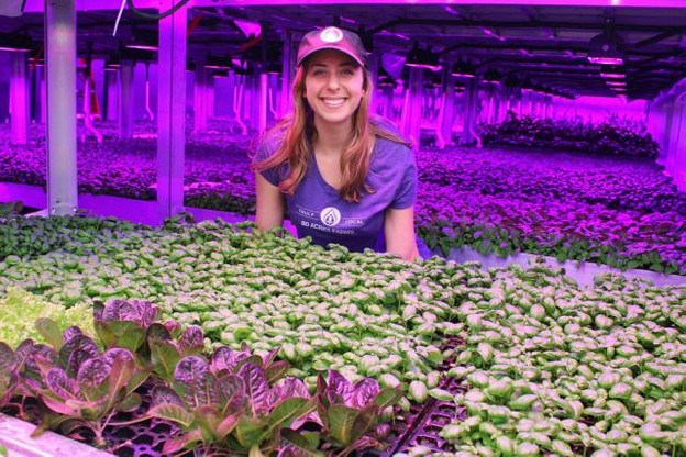 La société 80 Acres Farms s'affaire aux derniers préparatifs pour la construction d'une ferme automatisée qui s'étendra sur 14.000m2. (Photo: 80 Acres Farms)