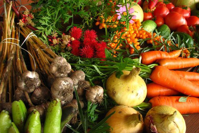 En cinq ans, la surface consacrée à l'agriculture biologique au Luxembourg a augmenté de 16,7%. (Photo: DR)
