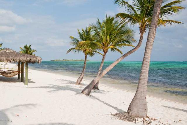 Les îles bordées de palmiers ne sont pas les pires paradis fiscaux selon Tax Justice Network. (Photo: Licence C.C.)