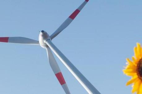 Enovos consacre 30% de ses investissements à l'énergie renouvelable. (Photo: Enovos)