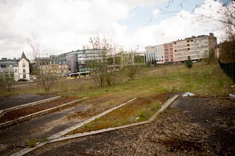 Si le vaste terrain est encore inoccupé, de nouvelles surfaces de bureaux y seront construites. (Photo: Christophe Olinger / archives)