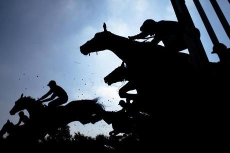 Des fonds proposent d'investir dans les chevaux de course. Attirant, mais pas sans danger. (Photo: Shutterstock)