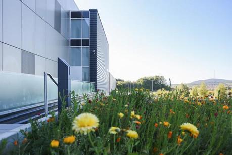 Le luxembourgeois LuxConnect se lance dans les partenariats internationaux. Ici, son data center de Bettembourg.  (Photo: Luxconnect)