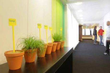 Le Lux Future Lab est un écrin d'accueil pour des entreprises qui débarquent au Luxembourg. (Photo: Luc Deflorenne / archives)