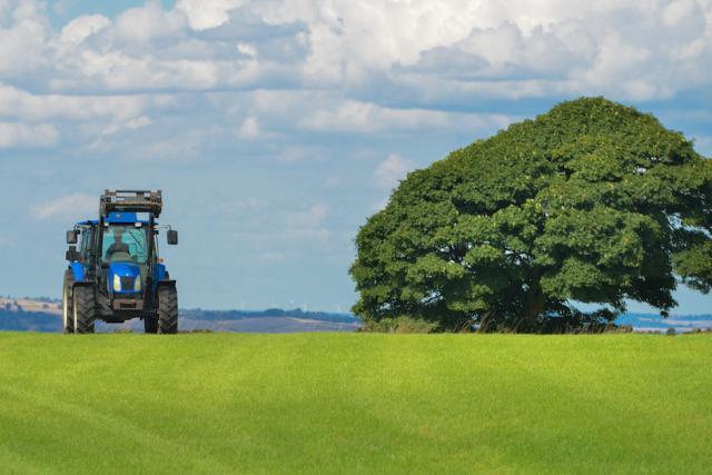 Si la nouvelle loi agraire a été votée ce jeudi, de nombreuses questions subsistent quant à l'avenir de l'agriculture luxembourgeoise. (Photo: DR)