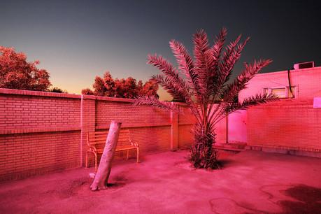 «Paradise City» est le nouvel ouvrage fort et coloré du photographe Sébastien Cuvelier, inspiré de son contact avec la culture iranienne et de son histoire familiale. (Photo: Sébastien Cuvelier)