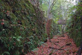 De nombreux chemins de randonnée s'offrent aux visiteurs aux alentours du parc animalier. ((Photo: Esch city life))