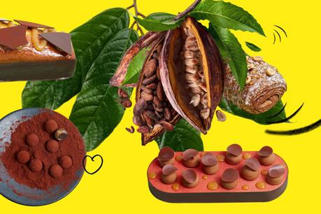 Oberweis travaille à présent le koa, un jus issu de la pulpe de cacao, sous forme de caramel dans une nouvelle gamme de douceurs, avec quelques références véganes. (Design: Sascha Timplan/Maison Moderne)