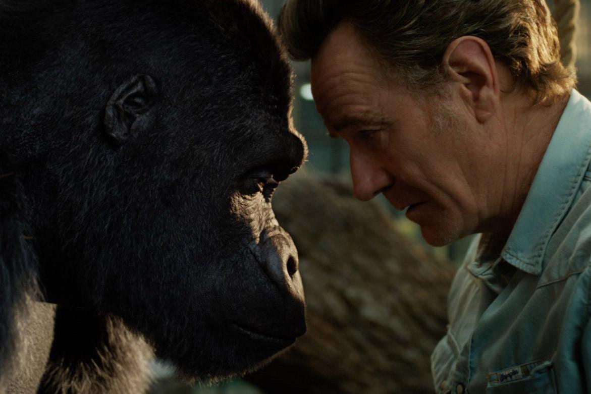 Disney+ attend beaucoup de son «The One and Only Ivan», le gorille au gros cœur, bientôt disponible. (Photo: Disney+)