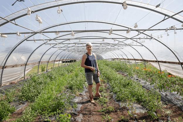 Sandrine Pingeon cultive ses fruits et légumes sur 3,5 hectares à Munsbach. (Photo: Romain Gamba/Maison Moderne)