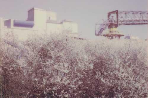 Paul Kirps présente ses derniers travaux: des photos réalisées au polaroïd. (Photo:Paul Kirps)