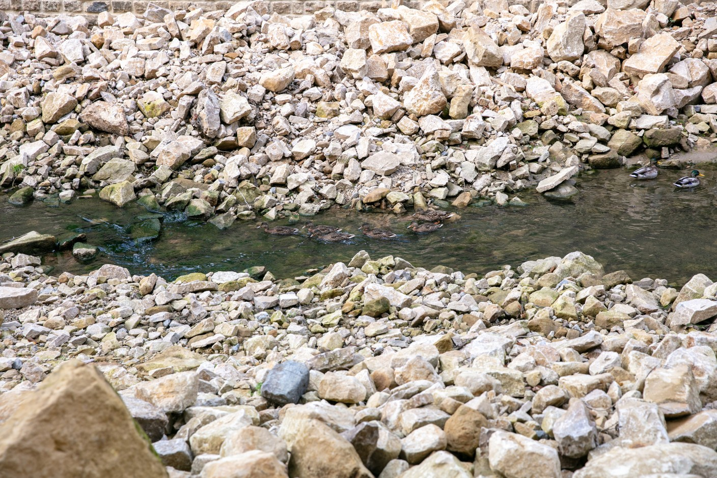 The watercourse flows in a more natural way, across natural stones. Photo: Romain Gamba / Maison Moderne