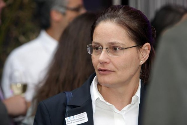 pmi-luxembourg-chapter-celebrates-its-inauguration---tuesday-15-june-2010.jpg