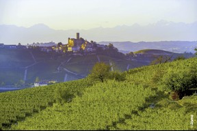 Le Piémont dans toute sa splendeur avec le terroir du domaine Vietti, sélectionné par Vinissimo (Hôtel Le Royal)