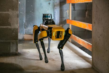Spot, le chien robot, est utilisé par Stugalux pour effectuer des scans 3D des chantiers de construction afin de vérifier que les structures sont conformes aux plans. (Photo: Romain Gamba/Maison Moderne)