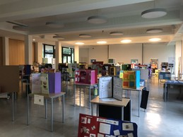 Student science exhibitions are pictured in a classroom Lycée Michel Lucius