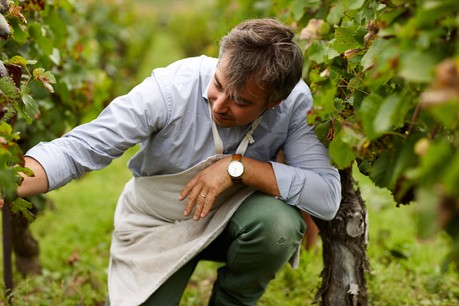 Raphaël Bérêche: le terroir avant tout. (Photo: Maison Bérêche)