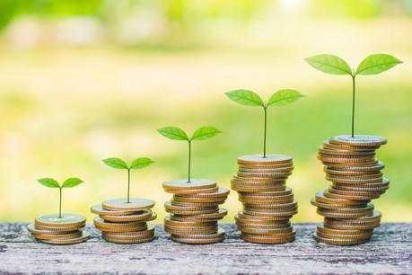 L'étude place le Luxembourg à la seconde place pour ce qui est de la «pénétration» de la finance verte, et à la septième pour la qualité de l'offre.  (Photo: Shutterstock)