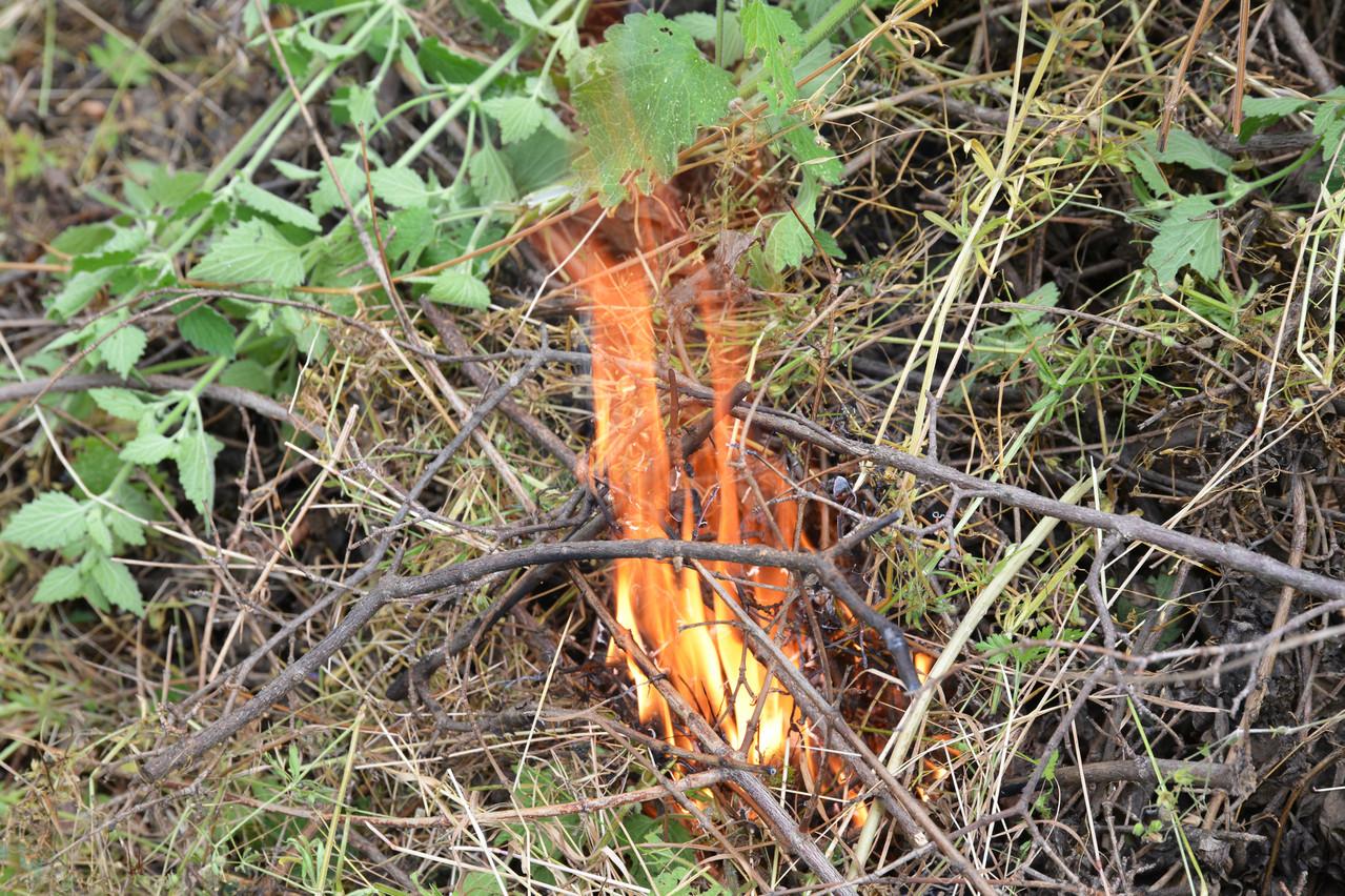 Un mégot ou un morceau de verre suffisent pour un départ de feu. (Photo: Shutterstock)