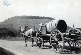 Jusque dans les années60, le domaine Schumacher-Knepper faisait aussi de l'agriculture. ((Photo: Domaine Schumacher-Knepper))