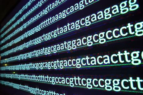 Le séquençage du génome permettra à la médecine de faire un bond en avant. Le projet luxembourgeois vise à redonner le contrôle de son génome à chaque Européen. (Photo: Shutterstock)