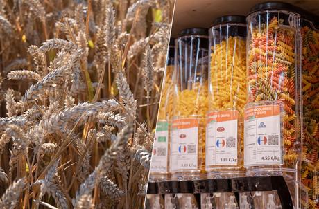 Entre excès de chaleur et excès d'humidité, les récoltes de blé dur sont bien en deçà des attentes et des niveaux moyens observés ces dernières années, tirant les prix vers le haut. (Photomontage: Maison Moderne. Photos: Shutterstock; Romain Gamba/Maison Moderne)
