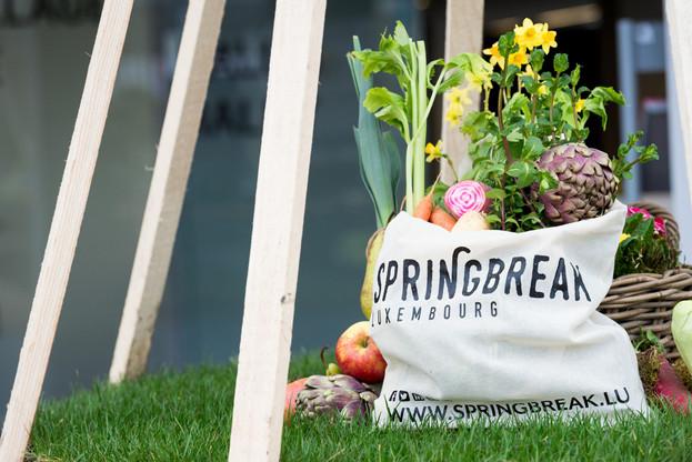 Le Springbreak est repoussé du printemps à l'été pour des raisons de sécurité sanitaire. (Photo: Springbreak/archives)