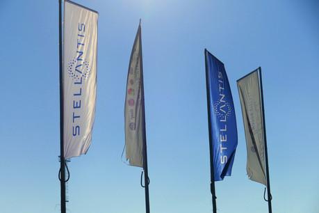 Stéphane Levi, ancien managing director au sein de PSA Belux, prend la tête de Stellantis Belux. (Photo: Shutterstock)