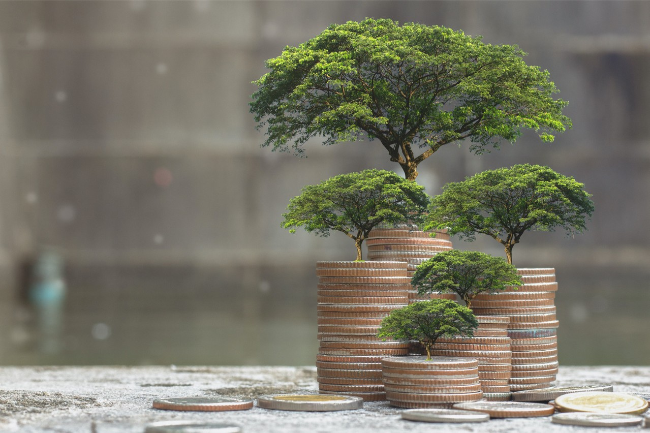 57% of investors worldwide are comfortable with the prospect of a transition to a fully sustainable portfolio. Photo: Shutterstock