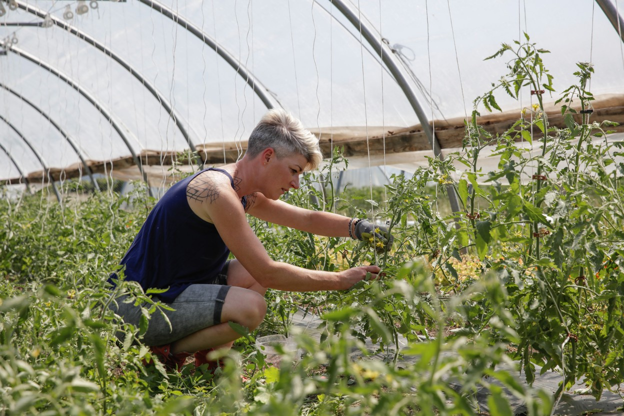 Sandrine Pingeon is pictured at the market gardens she runs in Munsbach Romain Gamba / Maison Moderne